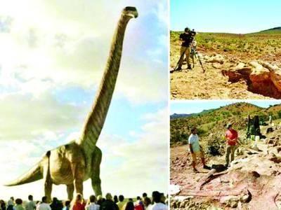 دس ہاتھیوں سے بھی زیادہ بھاری، دنیا کا سب سے بڑا ڈائنوسار