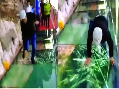 شیشے کے پل پر تھری ڈی افیکٹ،سیاحوں کے اوسان خطا ہوگئے