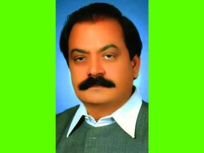 شہبا شریف نے میرے مشورے پر وزیر اعظم بننے سے انکار کیا : رانا ثنا