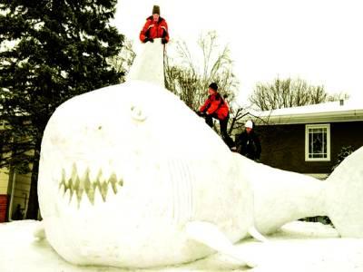 ویلز: دوآدمی 16فٹ لمی برف سے بنائی گئی شارک مچھلی کی نمائش کر رہے ہیں