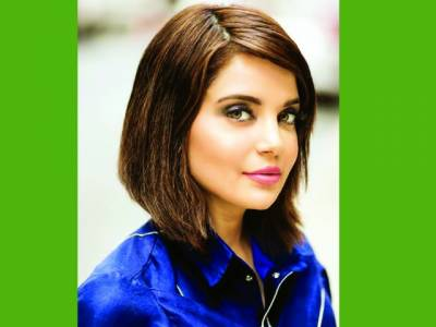 ارمینا خان نے پانچ فلموں میں کام کرنے کی پیشکش مسترد کردی