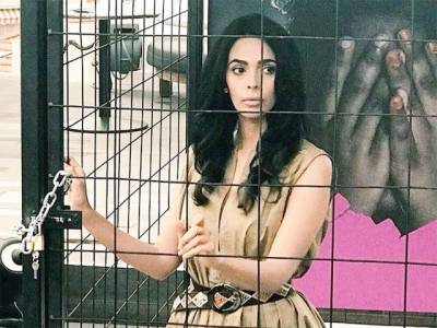 ملیکہ شراوت کا 'کانز' میلے میں خود کو جیل نما پنجرے میں قید کرکے احتجاج