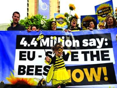برلن: یورپی شہری شہد کی مکھیوں کوزہربنانے کی خاطرمارنے کے خلاف احتجاج کررہے ہیں