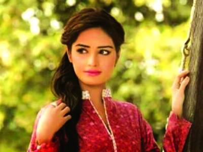 پاکستان میں ماڈلنگ کا معیار دنیا میں کسی سے کم نہیں ،سفینہ ملک