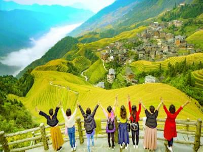 بیجنگ : چین میں سیاح دھان کی فصل کا خوبصورت منظر دیکھ کر خوشی کا اظہار کر رہے ہیں