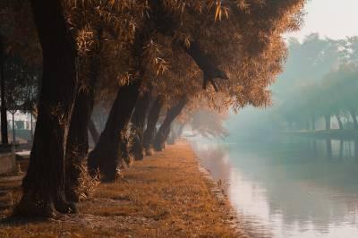 لاہور کی نہر کا خوبصورت منظر، ان دنوں صوبائی دارلحکومت میں سردی اور ہلکی دھند ہے