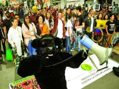 بگوٹا: کولمبیا میں مظاہرین بل فائیٹنگ کے خلاف احتجاج میں شریک ہیں۔