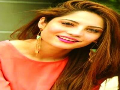 اداکاروں کومنفی کردارپر شدید تنقید کا سامنا کرنا پڑتا ہے،نیلم منیر خان